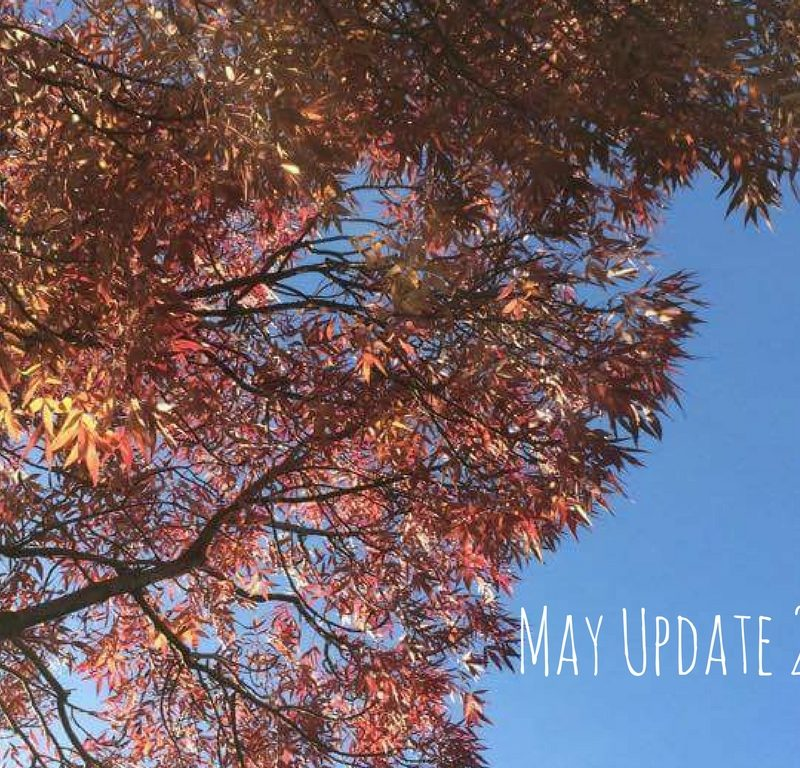 May Update